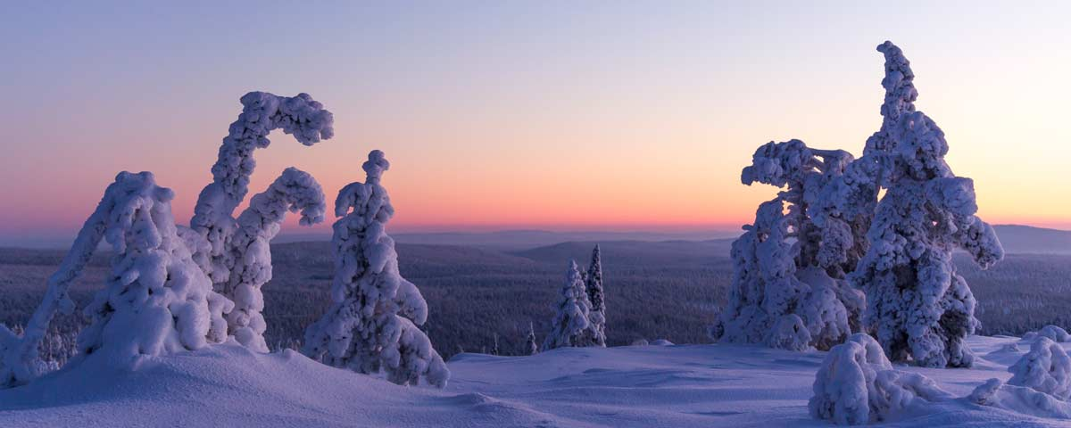 See the Real Lappish Winter